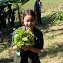 หนูจะกินผักตามฤดูกาล