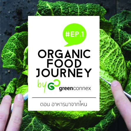 lo_greenconnex_poster_organicfoodjourney_001_sqaure-01