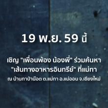 lo_greenconnex_poster_organicfoodjourney_001_sqaure-02