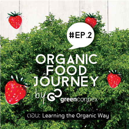 lo_greenconnex_poster_organicfoodjourney_002_edit_sqaure-01