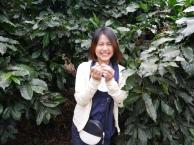 thumb_p1060894_1024
